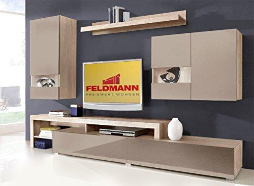 wohnwand anbauwand 167705 esche grau cappuccino hochglanz 0 m bel24. Black Bedroom Furniture Sets. Home Design Ideas